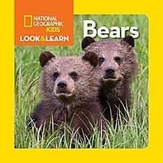 Look & Learn Bears