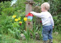 Make Gardening Enjoyable Again - Find Ways To Stop It Being Such Darn Hard Work